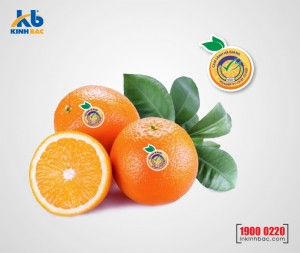 In tem dán hoa quả - DHQ02