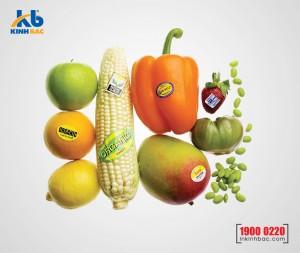 In tem dán hoa quả - DHQ06