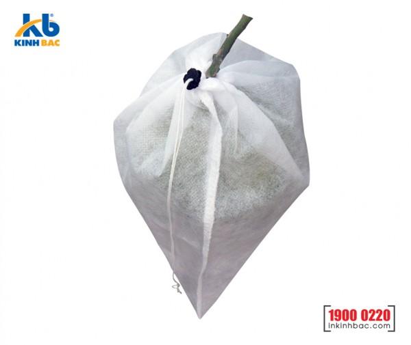 Túi bao trái cây - TBTC2