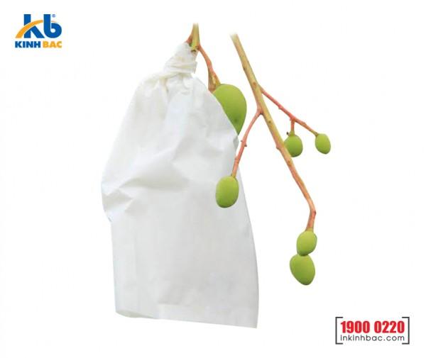 Túi bao trái cây - TBTC1