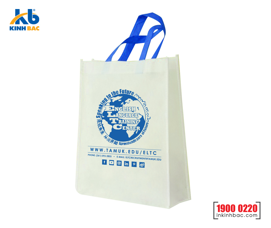 Túi hình hộp có hông - TVCH42
