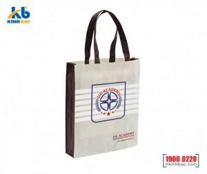 Túi hình hộp có hông - TVCH25