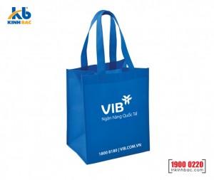 Túi hình hộp có hông - TVCH11