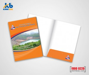In kẹp file 1 mặt - C300gsm (pindo)