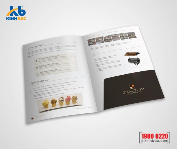 In kẹp file 2 mặt - C300gsm (pindo)