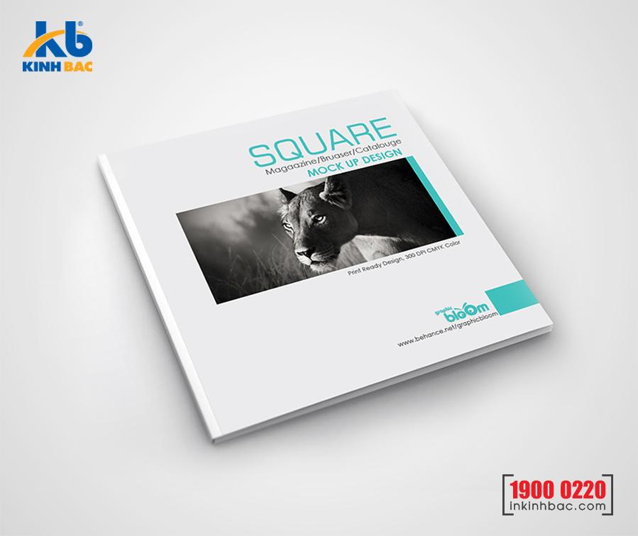 In catalogue hình vuông - 16 trang