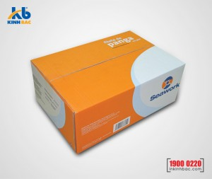 In hộp carton lạnh 01